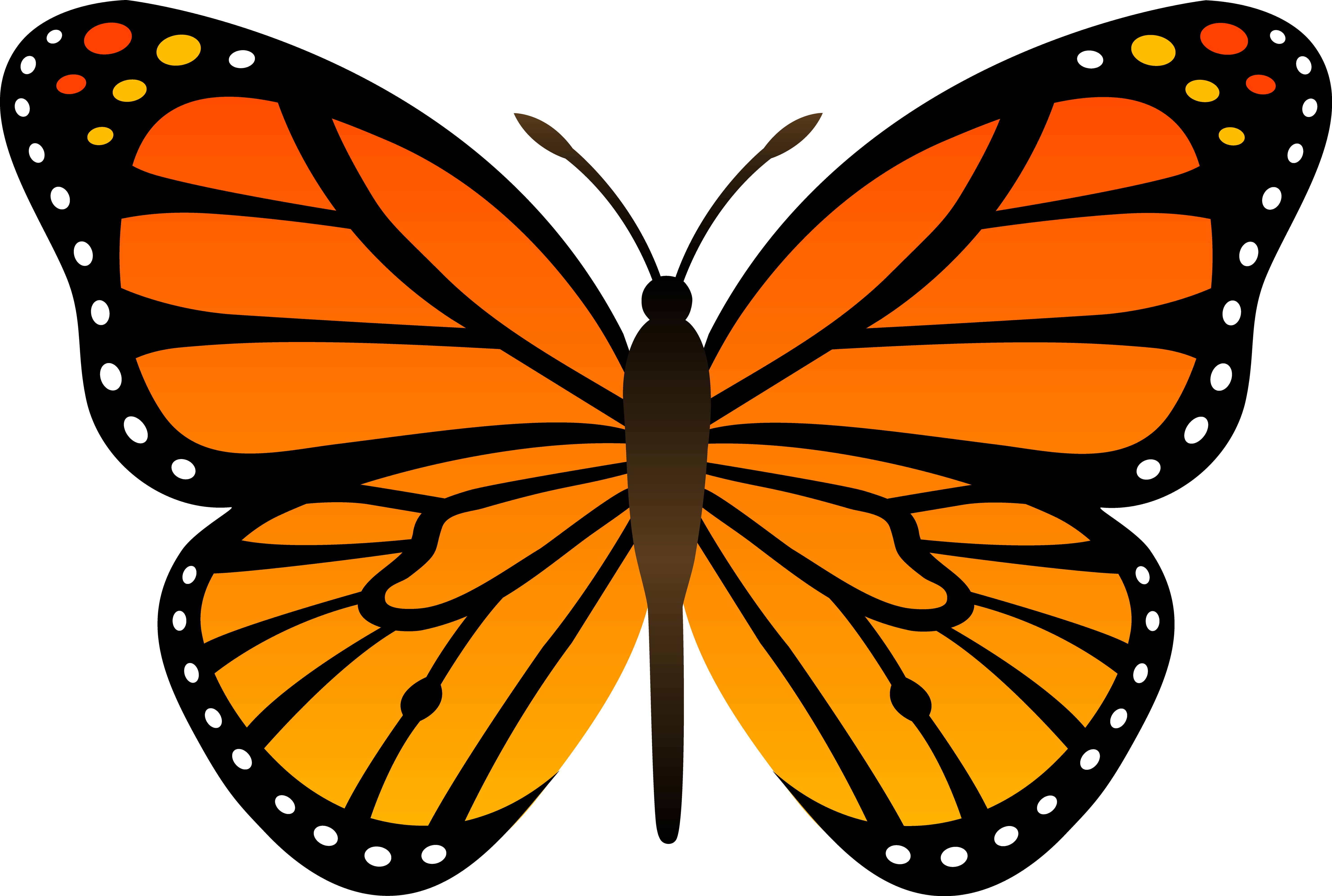 monarch_butterfly_vector