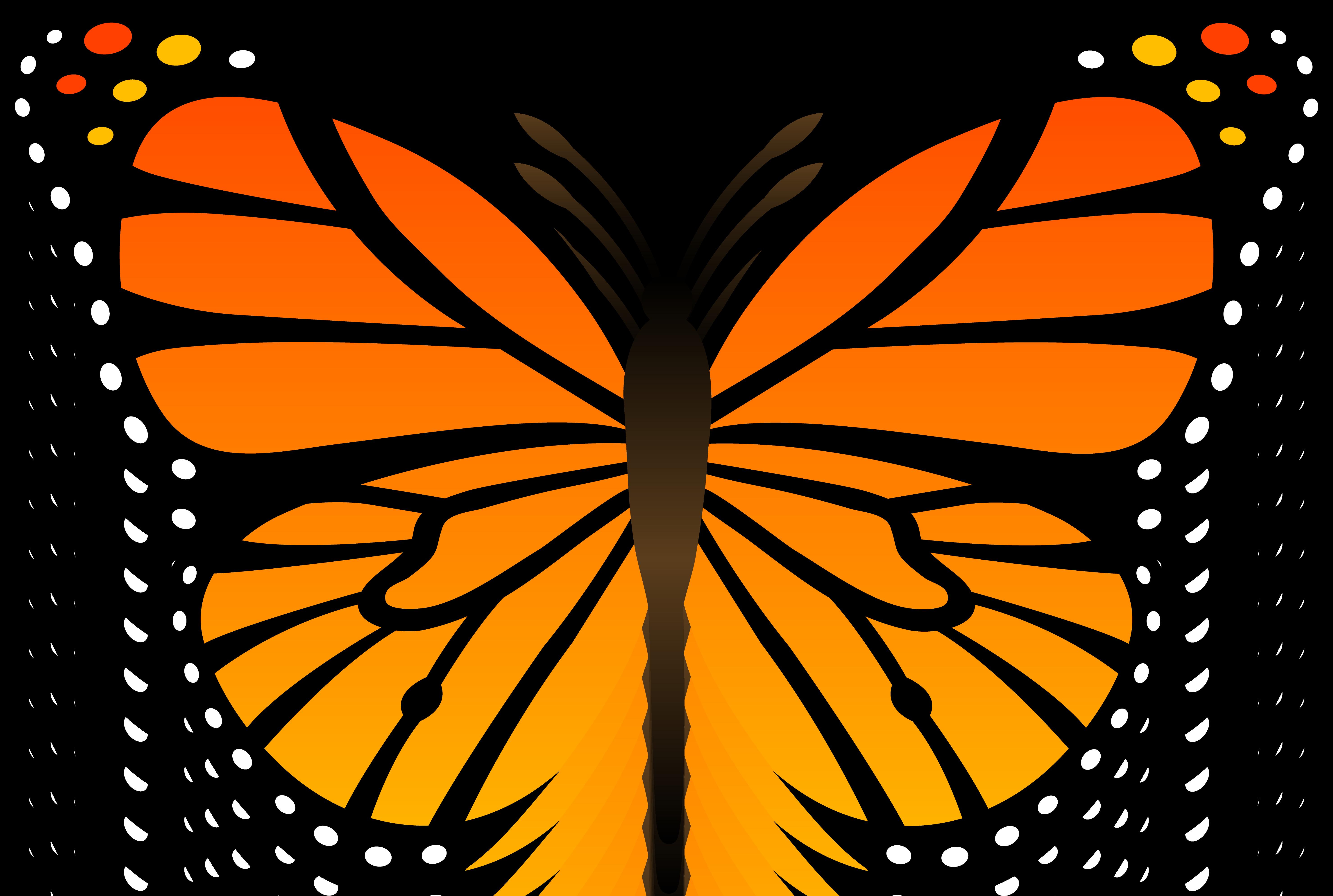 monarch_butterfly_vector